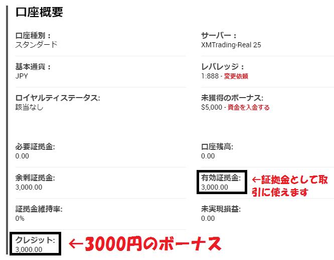 3000円クレジット反映